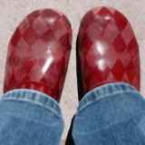 painted swede clogs