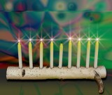 birch branch menorah