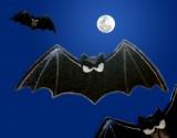 Angry bats craft