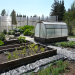 garden walkway cover
